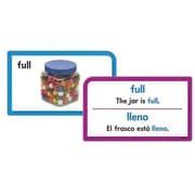 Trend Enterprises® Pocket Flash Card, Picture Words
