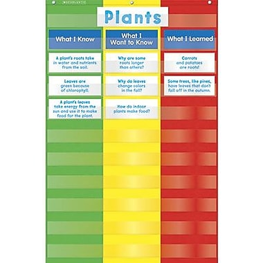 Teacher's Friend® 3-Column Pocket Chart