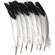 Chenille Craft® Imitation Eagle Quill Feathers, 12 Pieces
