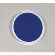Center Enterprises® 6 Jumbo Circular Washable Paint/Ink Pad, Blue