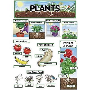 Creative Teaching Press™ Mini Bulletin Board Set, Plants