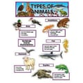 Creative Teaching Press™ Mini Bulletin Board Set, Types of Animals