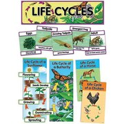 Creative Teaching Press Mini Bulletin Board Set, Life Cycles