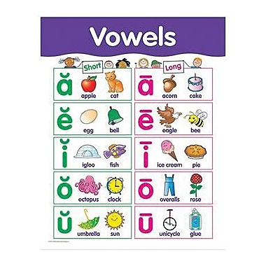 Creative Teaching Press™ Vowels Basic Skills Chart