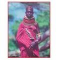 Edupress® Hands-On Heritage™ Photo Activity Card, Africa