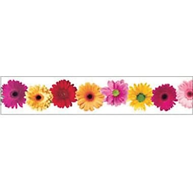 Edupress® Pre School - 12th Grades Straight Photo Border, Spring Flowers