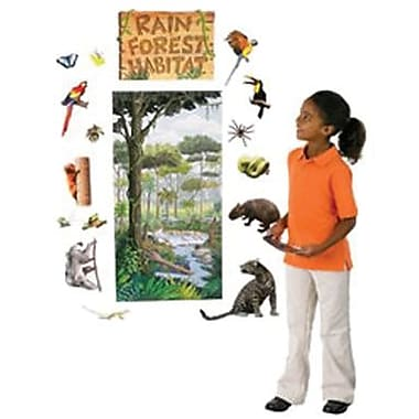 Edupress® Bulletin Board Set, Rain Forest Habitat