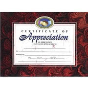 "Hayes® Brown Border Certificate of Appreciation, 8 1/2""(L) x 11""(W), 30/Pack"