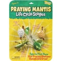 Insect Lore® Praying Mantis Life Cycle Stages Figures