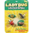 Insect Lore® Ladybug Life Cycle Stages Figures