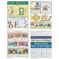 McDonald Publishing® Bulletin Board Pack, Basic Biology