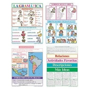 McDonald Publishing® Bulletin Board Pack, La Gramatica (Spanish Grammar)