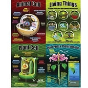McDonald Publishing® Poster Set, Life Science Teaching
