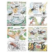 McDonald Publishing® Poster Set, Parts of Speech