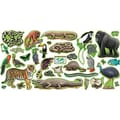 Trend Enterprises® Bulletin Board Set, Rain Forest Animals