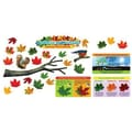 Trend Enterprises® Mini Bulletin Board Set, Why Leaves Change Color