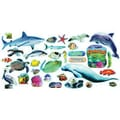 Trend Enterprises® Mini Bulletin Board Set, Coastal Sealife