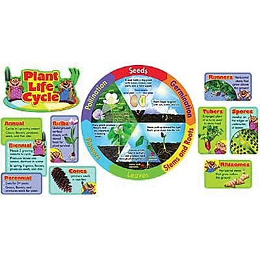 Trend Enterprises® Mini Bulletin Board Set, Plant Life Cycle