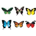 Trend Enterprises® pre-kindergarten - 9th Grades Classic Accents, Butterflies