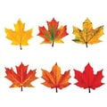 Trend Enterprises® Pre Kindergarten - 9th Grades Classic Accents, Maple Leaves
