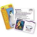 Trend Enterprises® Animals Pocket Flash Cards, Grades 3rd - 6th
