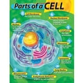 Trend Enterprises® Parts of A Cell Learning Chart