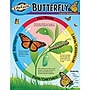 Trend Enterprises® Life Cycle of A Butterfly Learning
