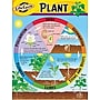 Trend Enterprises® Life Cycle of A Plant Learning