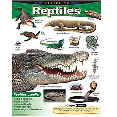 Trend Enterprises® Exploring Reptiles Learning Chart