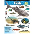 Trend Enterprises® Exploring Fish Learning Chart