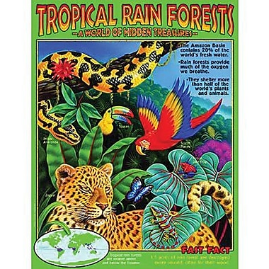 Trend Enterprises® Tropical Rain Forests Learning Chart