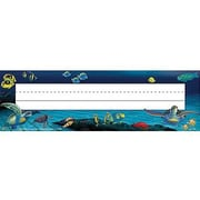 Teacher Created Resources® pre-school - 6th Grades Name Plate, WyLand UnderSea Treasures Jumbo