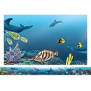 Teacher Created Resources® pre-school - 12th Grades Straight Bulletin Board Border Trim, Ocean Life