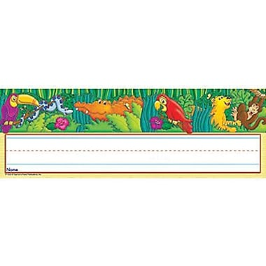 Teacher's Friend® Infant - 6th Grades Name Plate, Amazing Amazon