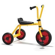 Winther® Duo Tricycle