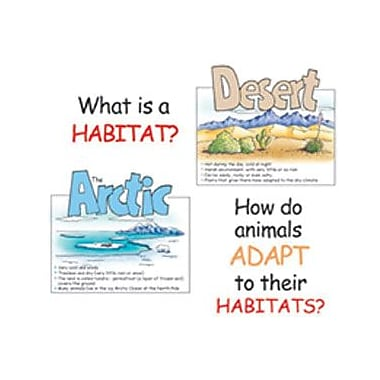 Eureka® Bulletin Board Set, Animal Habitats