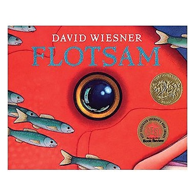 Houghton Mifflin® Flotsam (Hardcover) Book