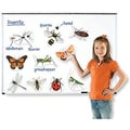 Learning Resources® Giant Magnetic Insect
