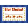 North Star Teacher Resources® Punch Card, Star Student