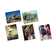 North Star Teacher Resources® Beginner Language Card