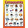 Trend Enterprises Consonants Learning Chart
