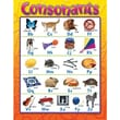 Trend Enterprises® Consonants Learning Chart