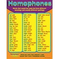 Trend Enterprises® Homophones Learning Chart