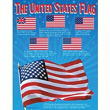 Trend Enterprises® The United States Flag Learning Chart