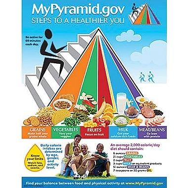 Trend Enterprises® My Pyramid. Gov-Steps To A Healthier You Learning Chart