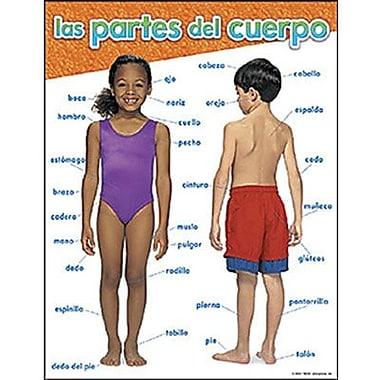 Trend Enterprises® Las Partes Del Cuerpo (Spanish) Learning Chart