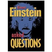 Trend Enterprises® ARGUS® Poster, Even Einstein Asked