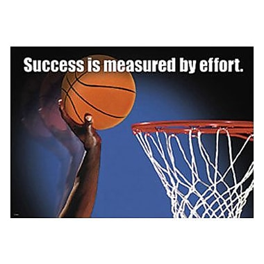 Trend Enterprises® ARGUS® Poster, Success Is Measured By Effort