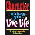 Trend Enterprises® ARGUS® Poster, Character Its How You Live