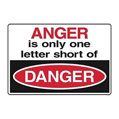 Trend Enterprises® ARGUS® Poster, Anger Is Only Only One Letter Short of Danger